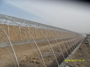 Solar Greenhouse3