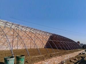 Solar Greenhouse5