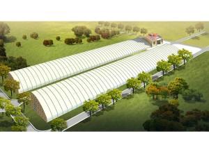 Solar Greenhouse6