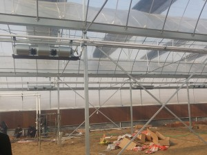Polycarbonate Sheet Greenhouse9