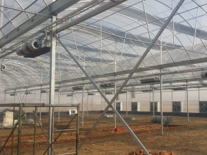 Polycarbonate Sheet Greenhouse10
