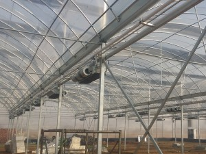 Polycarbonate Sheet Greenhouse13
