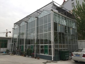 Glass Greenhouse18