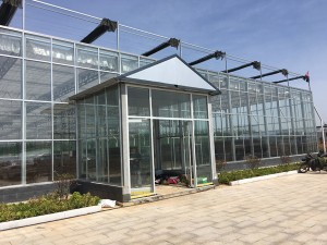 Glass Greenhouse23